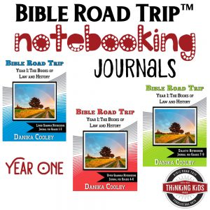 Bible Road Trip™ Year One Bible Notebooking Journals help kids take great note on what they've learned about the Bible. These are awesome!