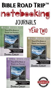 Bible Road Trip Year™ Two Bible Notebooking Journals help kids take great note on what they've learned about the Bible. These are awesome!