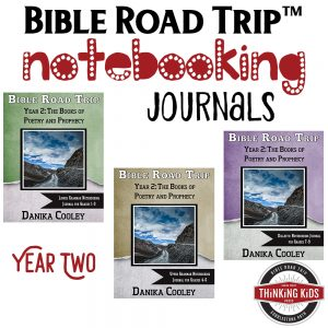 Bible Road Trip™ Year Two Bible Notebooking Journals help kids take great note on what they've learned about the Bible. These are awesome!