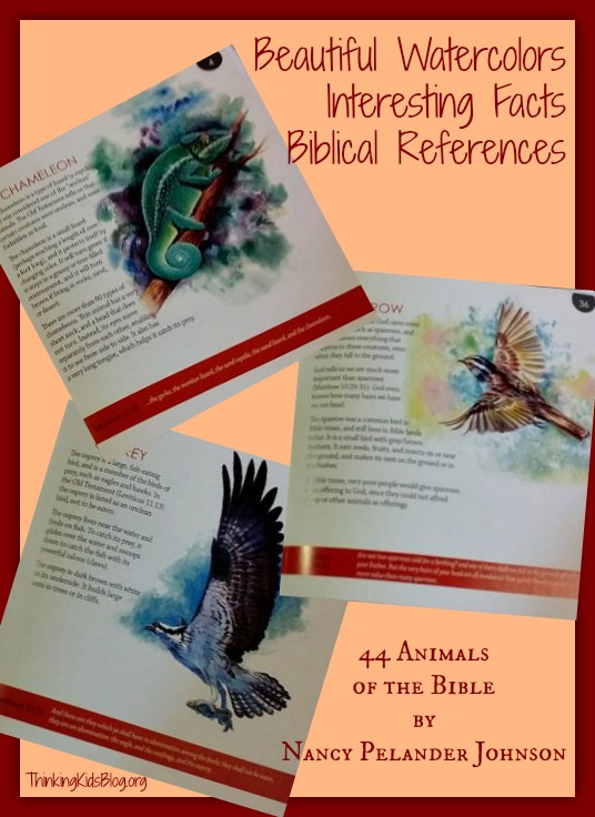 44 Animals of the Bible - Peek Inside