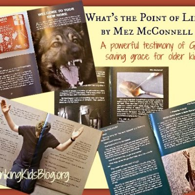 What's the Point of Life? by Mez McConnell {Review}