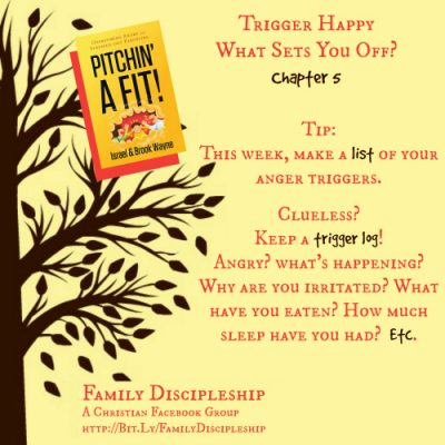Why Are You Angry? {Pitchin' A Fit Book Club Chapters 5-6}