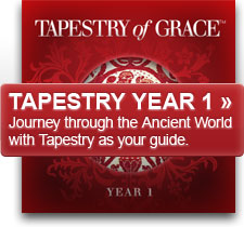 Tapestry of Grace Year One