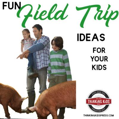 Fun Field Trip Ideas for Your Kids