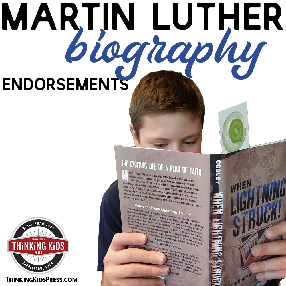 Martin Luther Biography | When Lightning Struck Book Reviews