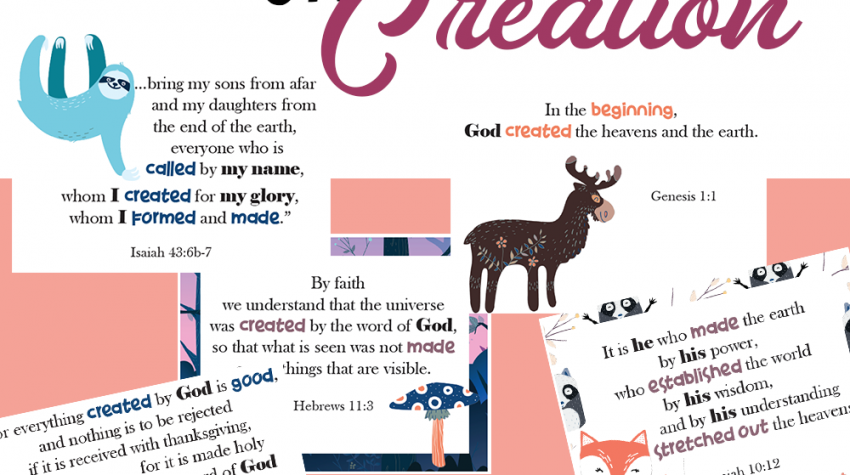 Bible Verses on Creation | Memory Verse Card Set for Your Kids